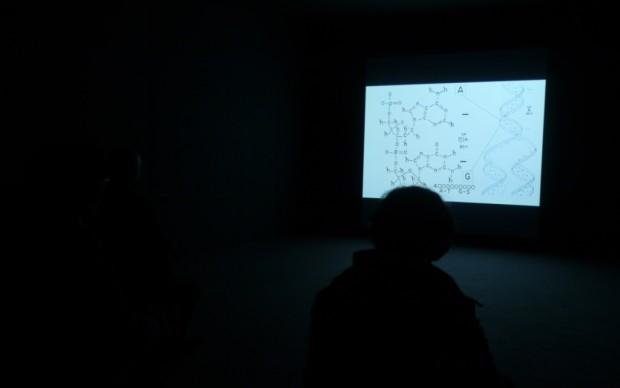 Il Palazzo Enciclopedico - video di Steve McQueen