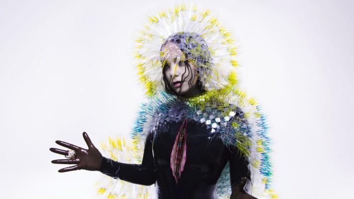 Björk, album Vulnicura