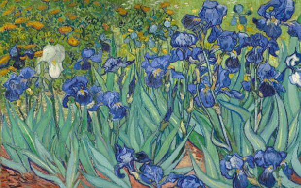 Vincent Van Gogh, (particolare) Iris, 1889