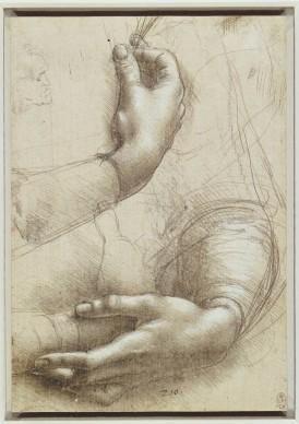 Leonardo da Vinci, Studio di braccia e mani (per il Ritratto di Cecilia Gallerani) e profilo maschile (1486 -1488), punta d'argento, rialzata di biacca su carta preparata rosata; 210 x 150 mm, The Royal Collection / HM Queen Elizabeth II