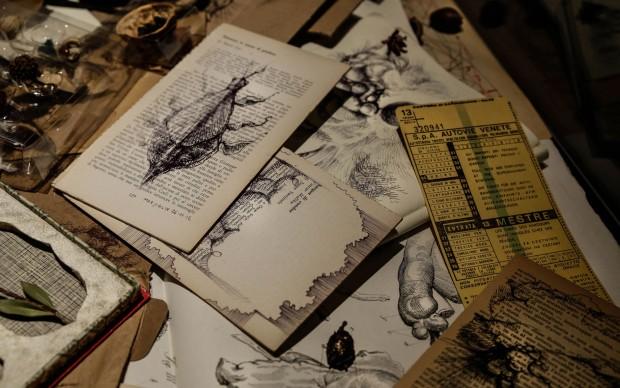 elisa bortolussi errante_dettaglio_teca_oggetti_disegni_foto_giulia_callino