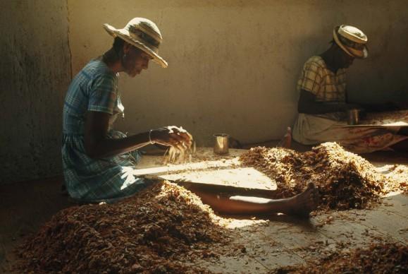 WINFIELD PARKS/National Geographic: Charlotte Town, Grenada, Indie Occidentali britanniche