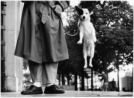 Elliott Erwitt, Parigi - Francia, 1989