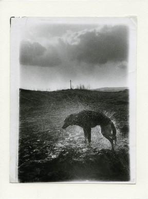 Boris Mikhailov, Senza titolo, dalla serie Black Archive, 1968–79 © Boris Mikhailov Courtesy Camera - Centro Italiano per la Fotografia