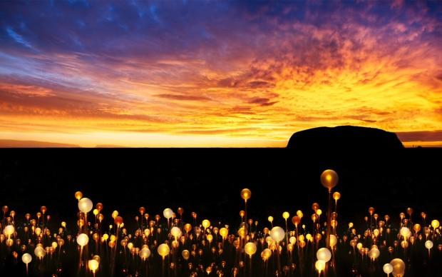 Field of Light installazione light art Australia Ayers Rock