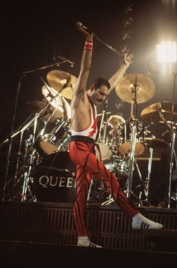 Freddie Mercury live nel 1984 (Photo by Hulton Archive/Getty Images)