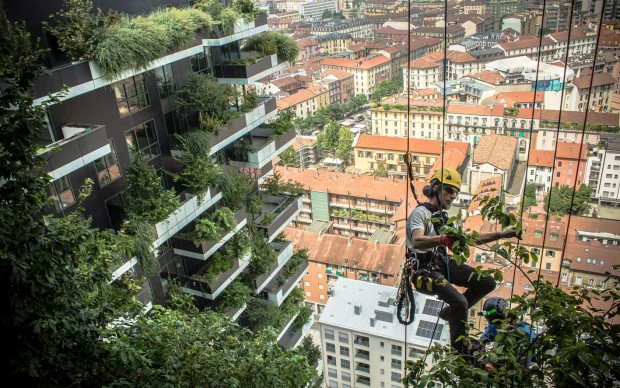 The Flying Gardeners, documentario sul Bosco Verticale, progetto studio Boeri, Milano