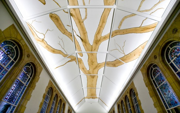 Tania Kovats Installation view, Tree (2009) at Natural History Museum, London Wood, 7000cm © The Trustees of the Natural History Museum, London