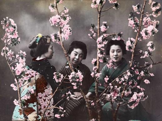 Eliza Scidmore, Giappone, 1900 circa. Le fotografie del Giappone colorate a mano venivano fornite alla rivista, che aveva iniziato a pubblicare questo tipo di immagini due anni prima, da Eliza Scidmore.