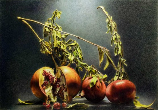Emanuele Dascanio, Composition of  pomegranates - polycolo paste by LYRA - 50 x 35 cm - 2015