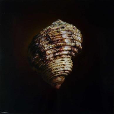 Emanuele Dascanio, Fibonacci's Gold - oil on board - 50 x 50 cm - 2012