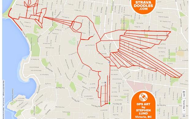 Stephen Lund hummingbird-gps-doodles-artista-ciclista-canada