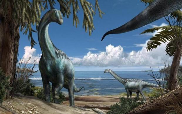 tito dinosauro sauropode titanosauro museo scienza milano