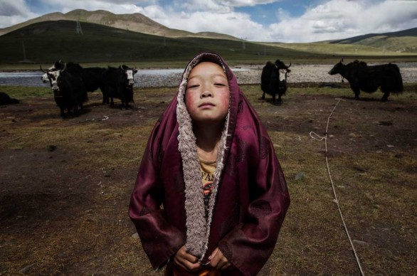 Tibetan Nomadic Culture Faces Challenges On The Tibetan Plateau, Cina, 2015 © Kevin Frayer, Canada, Winner, Professional, People, 2016 Sony World Photography Awards