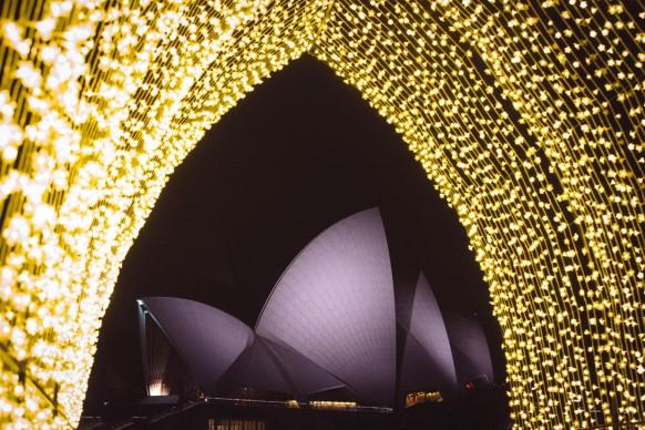 Vivid Sydney 2016,  Cathedral of Light, Royal Botanic Gardens. Photo Credit - Destination NSW