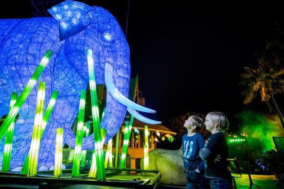 Vivid Sydney 2016, Taronga Zoo. Photo Credit: Destination NSW