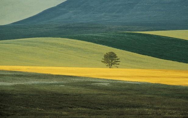 Franco Fontana, Basilicata Landscape, Italy 1978, Collezione MAXXI