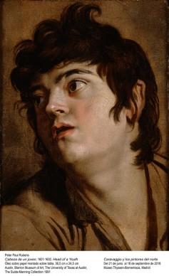 Pieter Paul Rubens, Testa di giovane, 1601-1602