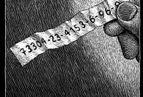 Thomas-Ott-The-Number-73304-23-4153-6-96-8 fumetto logos