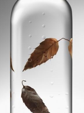 Nendo, Rain Bottle,  photo credit: Hiroshi Iwasaki