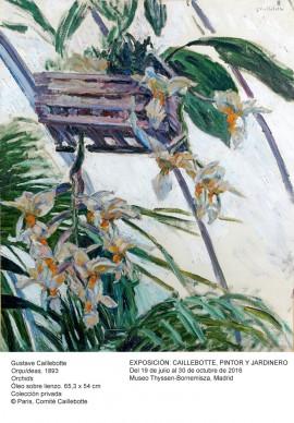 Gustave Caillebotte,  Orchidées, 1893  © Paris, Comité Caillebotte