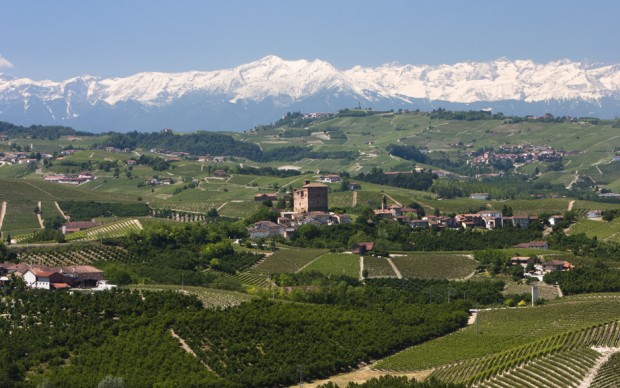 Doyouwine, Castello di Grinzane Cavour - Vista sui vigneti di Barolo, fonte Flickr