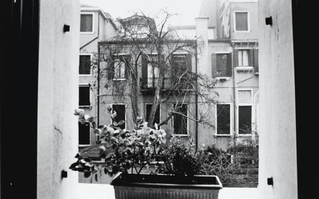 Noboyushi Araki, Araki in Venice, 2002, stampa sali d'argento, cm 61x51