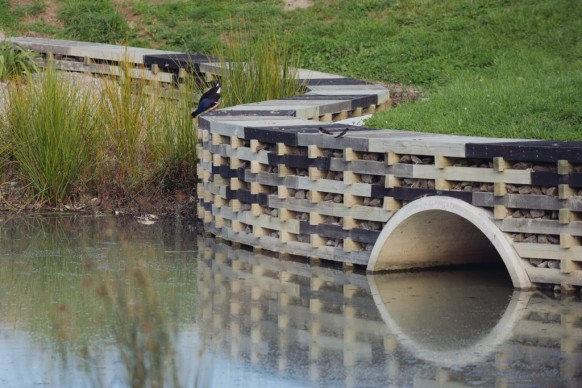 World Architecture Festival, Landscape of the Year 2016 – Isthmus, Kopupaka Reserve