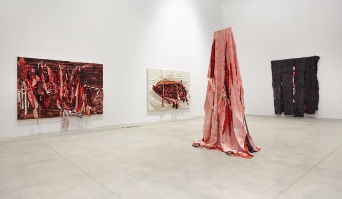 Anish Kapoor, (in primo piano) Robe Toga, 2012, Silicone e tela