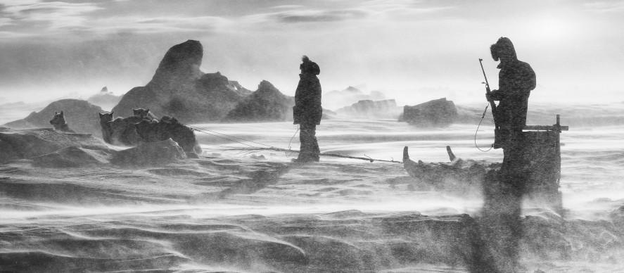 Carsten Egevang ® East Greenland, Scoresbysund 2016