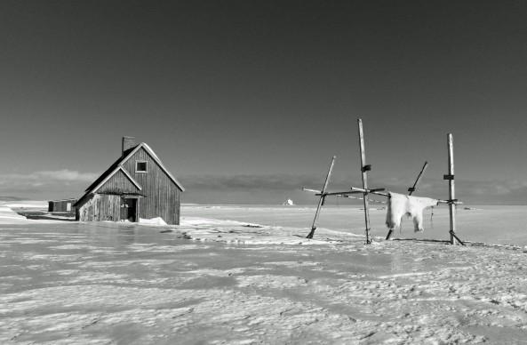 Paolo Solari Bozzi, Kap Hope, Scoresbysund, East Greenland, 2016 © Paolo Solari Bozzi