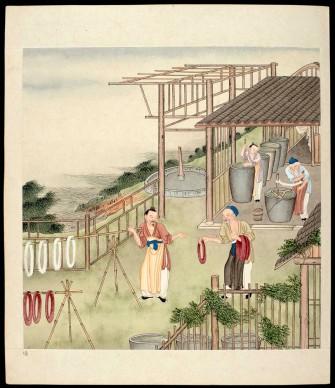 Album di acquarelli su carta, Cina, XVIII secolo, Dinastia Qing (1644-1911), Firenze, Biblioteca Nazionale Centrale