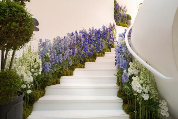 Delphinium Jungle - Figa & Co, Mayfair Flower Show 2017, Londra