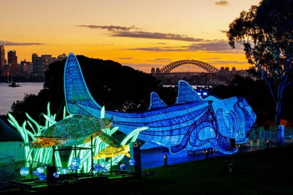 Vivid Sydney 2017, Taronga Zoo preview. Photo James Horan/Destination NSW