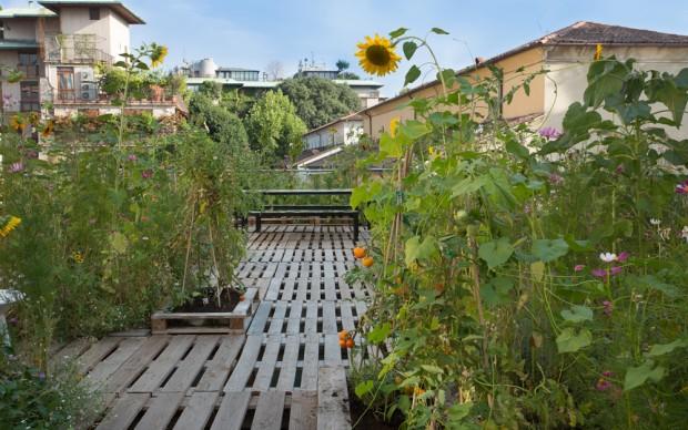 Piuarch, Orto sul tetto, Milano