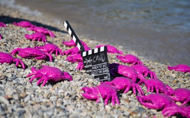 Cracking Art, Anch'io ho preso un granchio!, Isola d'Elba, estate 2017, photo by Guido Muti