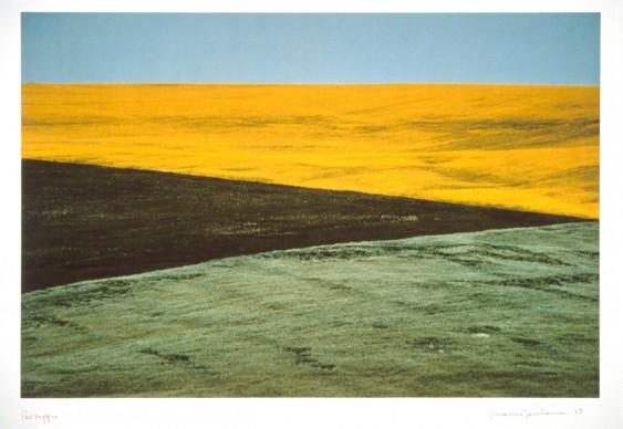 Franco Fontana, Paesaggio, Puglia, 1975, UniCredit Art Collection