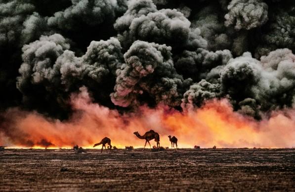 Camels and Oil Fields, Al Ahmadi, Kuwait, 1991 © Steve McCurry