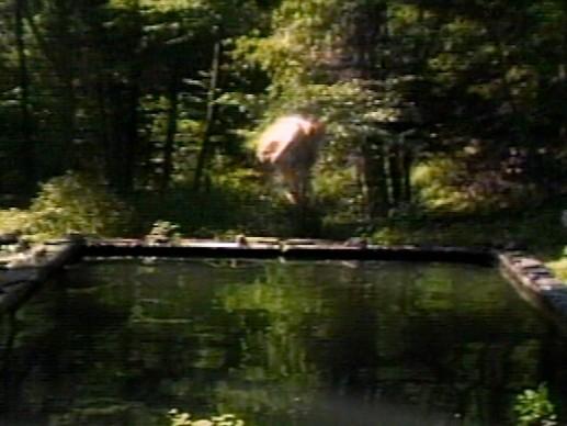 The Reflecting Pool, 1977–79, interpreti: Bill Viola, Courtesy of Bill Viola Studio © Bill Viola. Photo: Kira Perov