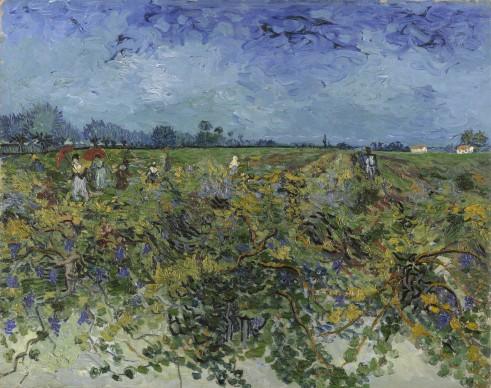 Vincent van Gogh, Vigneto, 1888, Otterlo, Kröller-Müller Museum