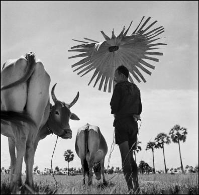 Werner Bischof, Cambodia, 1952 © Werner Bischof - Magnum Photos