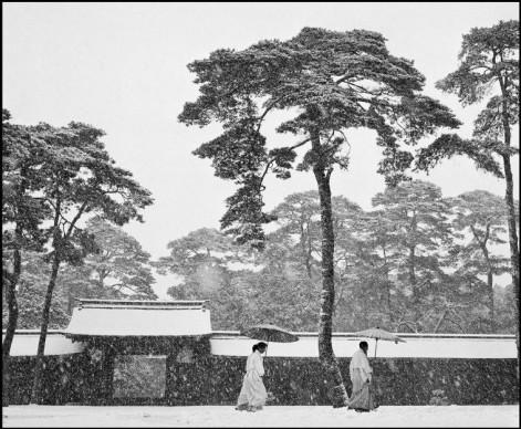 Werner Bischof, Courtyard of the Meiji shrine, Tokyo, Japan, 1951 © Werner Bischof - Magnum Photos