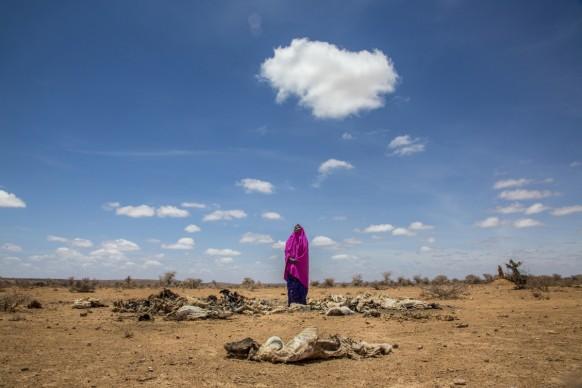 Amina Suleiman Gas, tra le carcasse del suo bestiame, morto a causa della siccità Villaggio di Barwako, Somalia centrale, 2017 © Georgina Goodwin