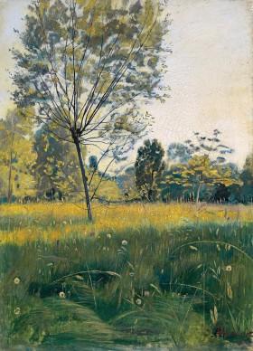 Ferdinand Hodler, The Golden Meadow, c. 1890. Kunstmuseum Winterthur, Stiftung Oskar Reinhart. Foto: SIK-ISEA, Zürich | Zurich/Philipp Hit