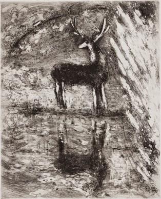 Marc Chagall, Il cervo che si specchia nell'acqua, acquaforte