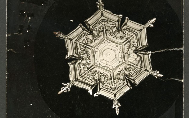 Wilson A. Bentley, Snowflake, fonte Smithsonian Institute Archives