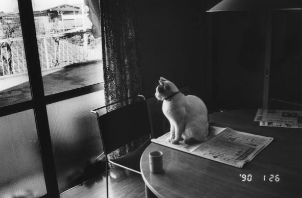 Nobuyoshi Araki, Winter Journey, 1990/2005