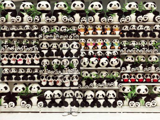 Liu Bolin, Panda