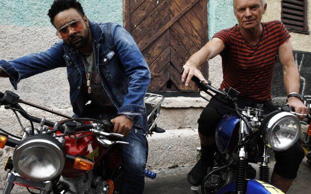 Shaggy e Sting, photo by Salvador Ochoa