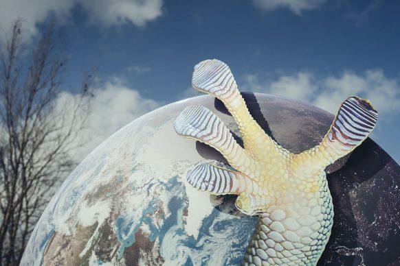 Katja Novitskova, Earth Potential (Bredene), dettaglio © Westtoer, Jimmy Kets